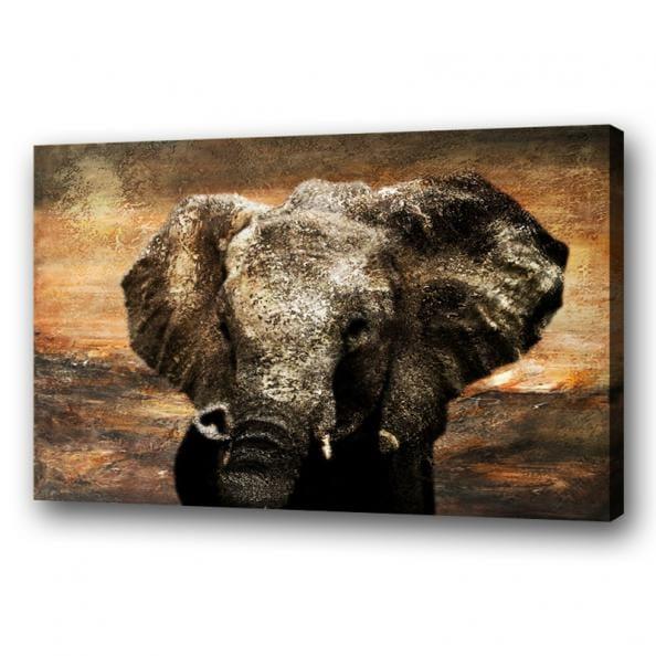 Olieverf schilderij olifant vi kunst voor in huis for Schilderij olifant
